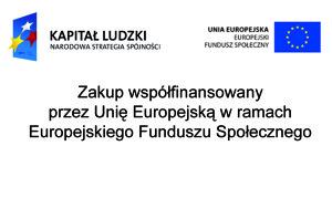 oznakowanie_zakupow_EFS_dzialanosc_gospodarcza_2009